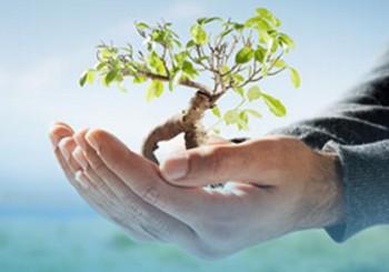 PPRA – Programa de Prevenção de Riscos Ambientais